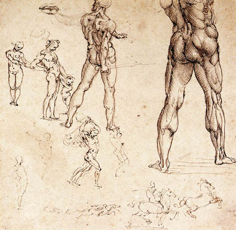 https://wizjalokalna.files.wordpress.com/2011/03/anatomical-studies-leonardo-da-vinci.jpg