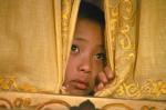 Siedem lat w Tybecie młodyDalajlama