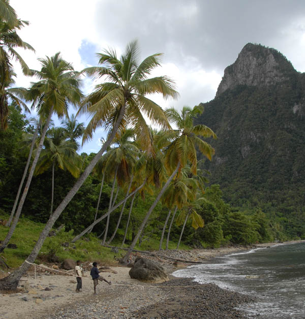 https://wizjalokalna.files.wordpress.com/2011/06/remus-i-romulus-st-lucia-karaiby.jpg?w=780