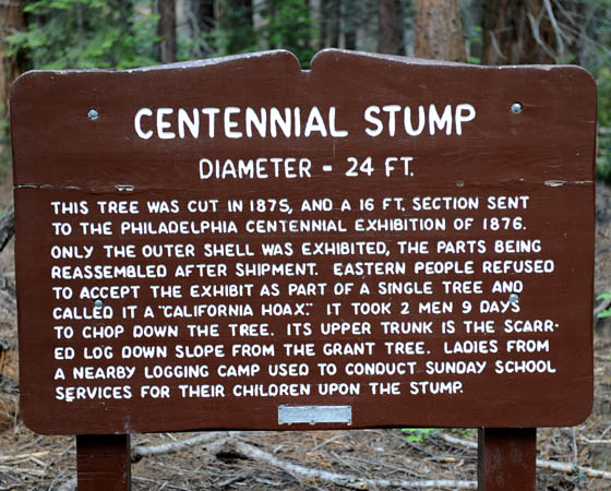 https://wizjalokalna.files.wordpress.com/2011/08/centenial-stump.jpg?w=780