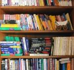 biblioteka travel guides