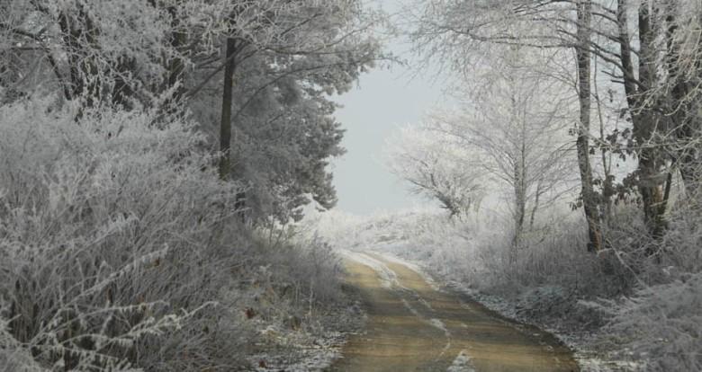 polna droga w zimie
