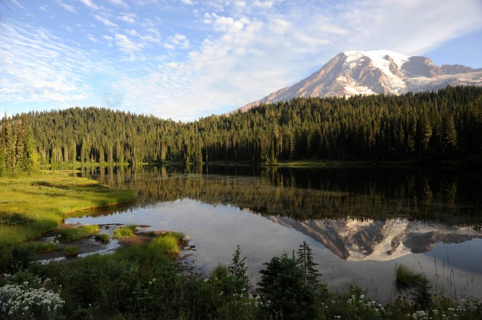 Park Narodowy Mt. Rainier (1)