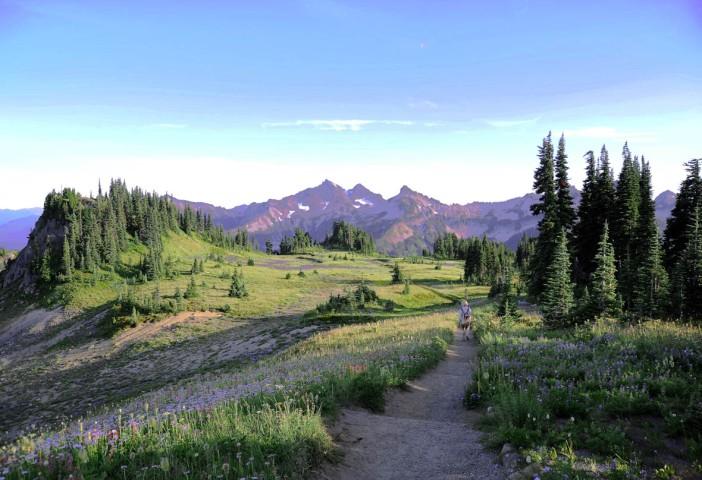 Park Narodowy Mt. Rainier (5)