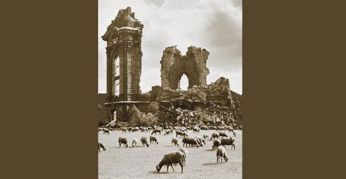 owce i ruiny - panta rei