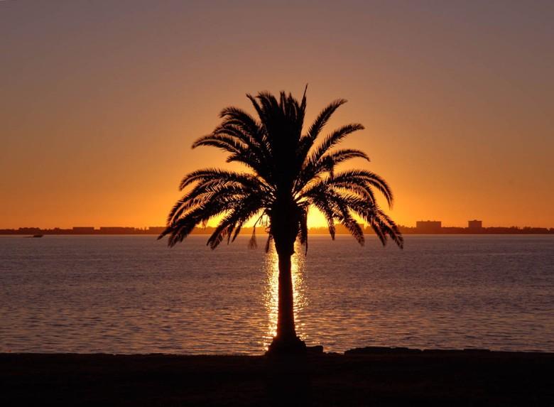 Florydzki zachód Słońca