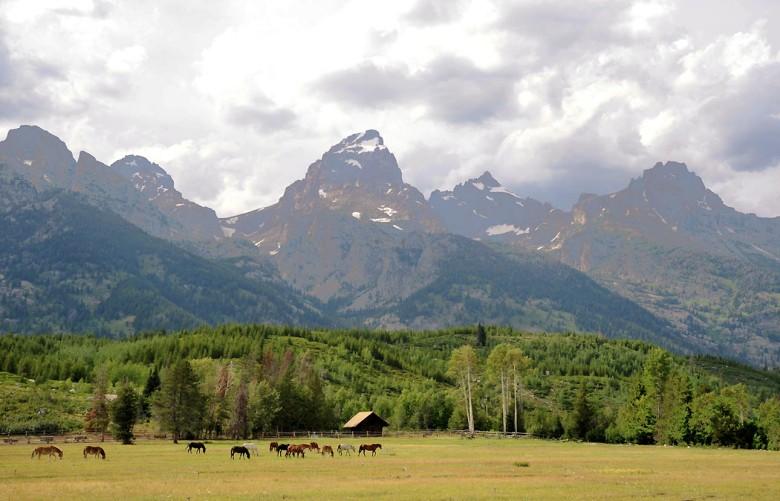 Jackson Hole – ranczo u podnóża gór Grand Teton