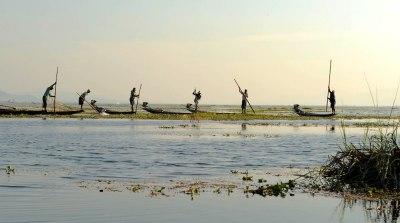 Jezioro Inle - rybacy przy pracy (2)