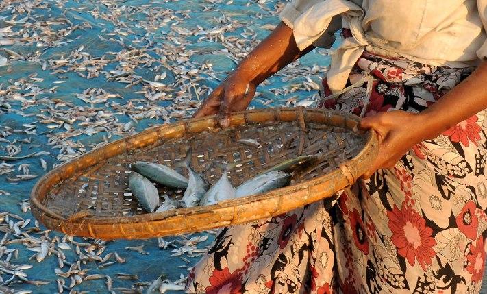 Kosz z rybami i spódnica w kwiaty