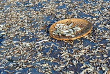 wioska rybacka - Birma (8)
