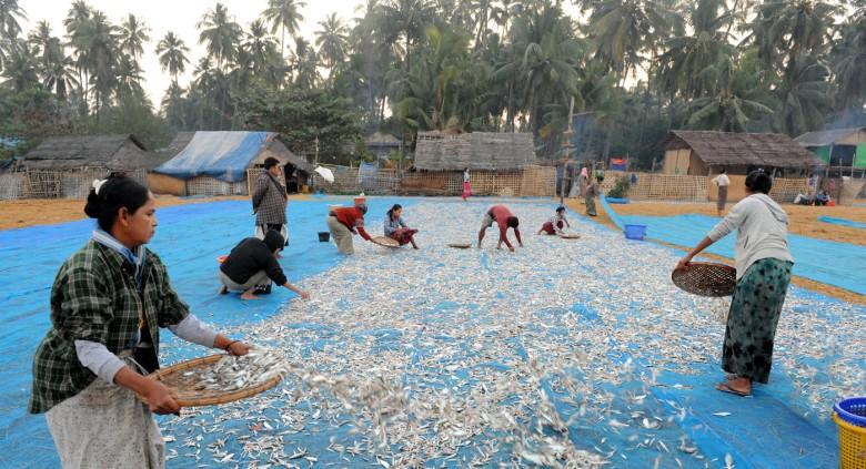 wsioska rybacka - Birma (5)