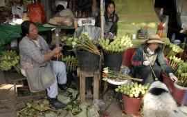 Sprzedawczynie lotosów z Cziang Mai (TAJLANDIA)