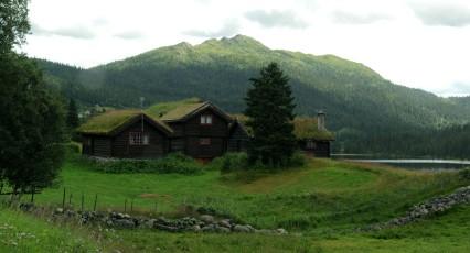 chatki z dachem jak łąka