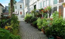 malownicza uliczka w Bergen