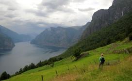 jeszcze jeden fiord - jeszcze jedna spektakularna panorama