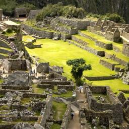 Machu Picchu (14)