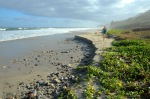 Playa Lobo – Puerto Vallarta(Meksyk)