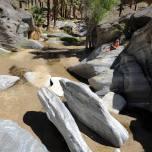 Kanion Palmowy (Kalifornia)