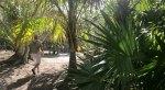 Jukatan (Meksyk)