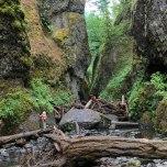 Oneonta Gorge (Oregon)