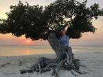Divi divi tree – Aruba – fot Stanisław Błaszczyna(6)