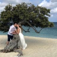 Divi divi tree - Aruba - fot Stanisław Błaszczyna (7)