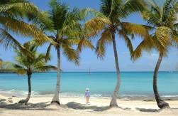 Isla Catalina (Dominikana)