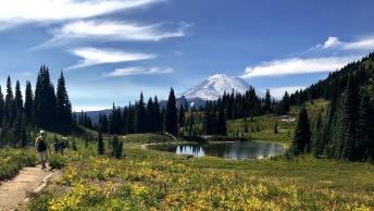 Mount Rainier NP, fot. Stanisław Błaszczyna (13)