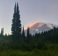 Mount Rainier NP, fot. Stanisław Błaszczyna (54)