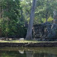 Angkor Thom, fot. Stanisław Błaszczyna (8)
